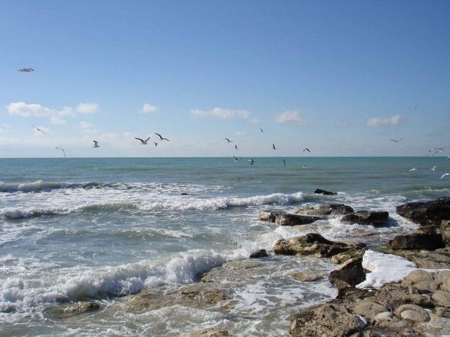 Отдых на Каспийском море 2016 цены