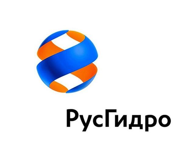 Риски «РусГидро» в 2016 году будут страховать три страховщика
