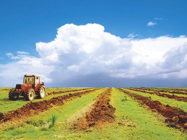 СМИ: единороссы предлагают выставлять на торги сельхозземли, которые не используются