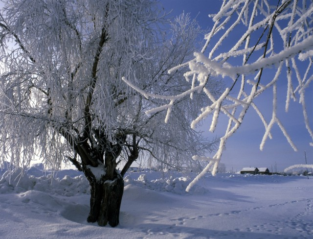 Эффективная зимняя