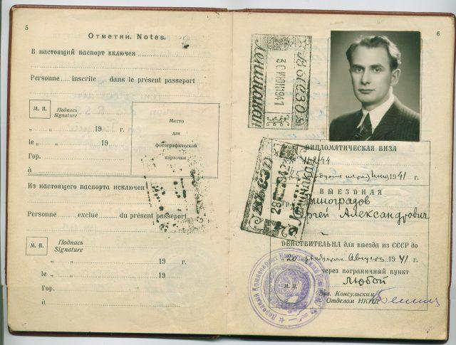 Действителен ли паспорт гражданина СССР?
