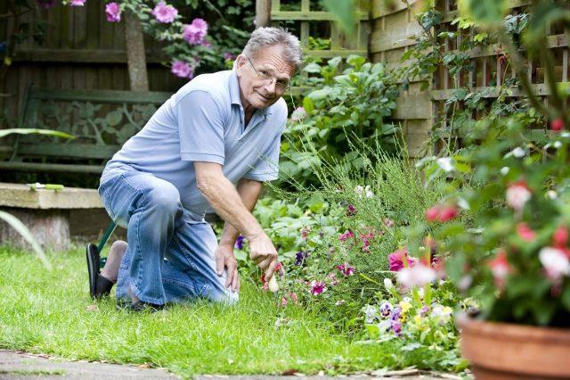 ФНС разъяснила особенности уплаты налога дачниками и садоводами
