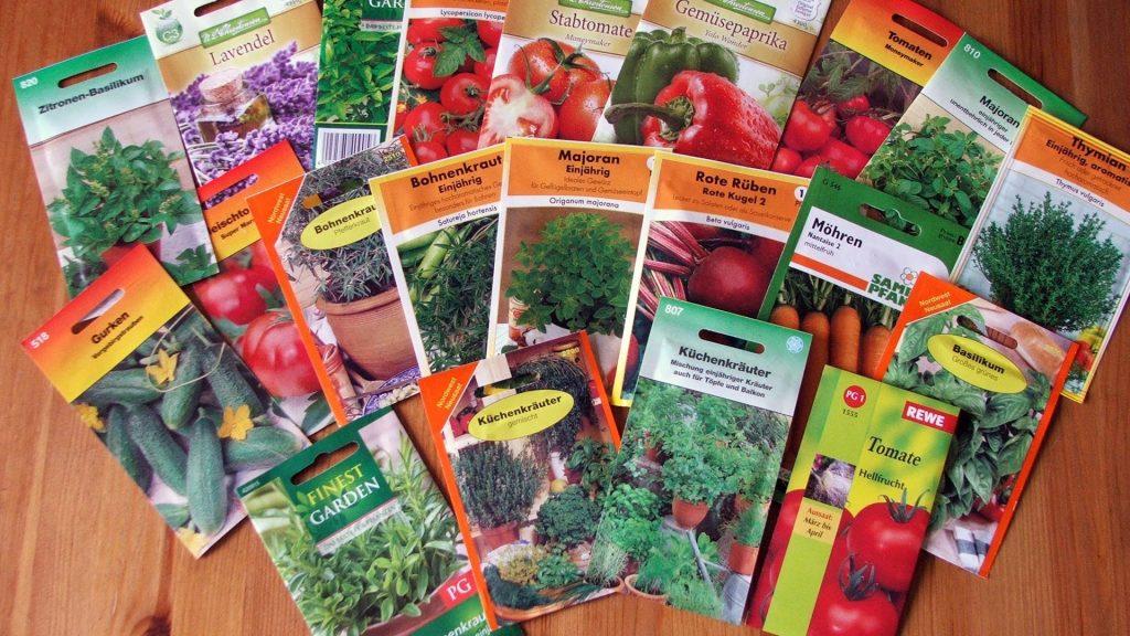 Может ли ИП торговать семенами