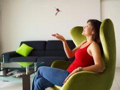 Цена вопроса растет. Дольше всего квартиры окупаются при сдаче в аренду в Чебоксарах и Москве