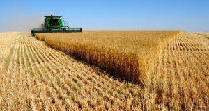 Единая субсидия вызвала рост затрат на агрострахование