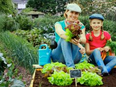 """Фермеры и огородники получат больше прав в """"земельном вопросе"""""""