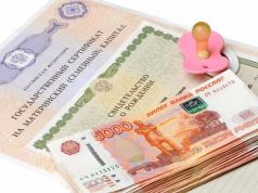 Совфед одобрил закон о запрете взыскания долгов с социальных пособий