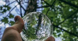 В России могут ввести новый экологический налог