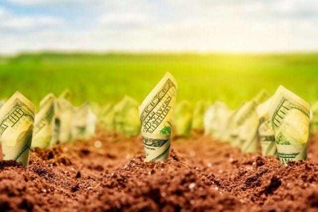 Прогноз цен на землю в 2019 году