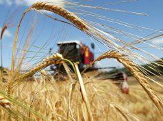 Аграрии возвращаются к страховщикам. Изменение законодательства удешевило полисы