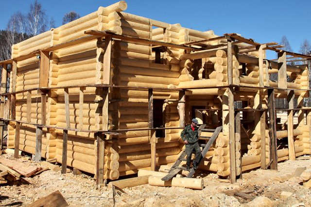 У леса на опушке. Получить древесину для строительства жилья станет проще