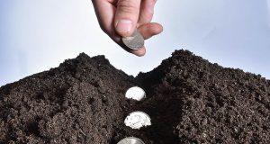 Земельному налогу требуются уточнения. Власти начинают сверку данных об участках граждан